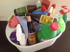 Steamrail Brewing Co. beers...nice beer or household cleaner? You decide.