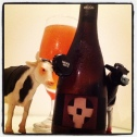 Moo Brew Belgo